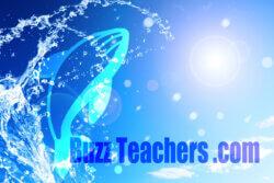 buzzteachers